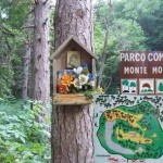 Parco Comunale Monte Montone