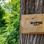 Sabato 11 agosto ANIMAL PARTY